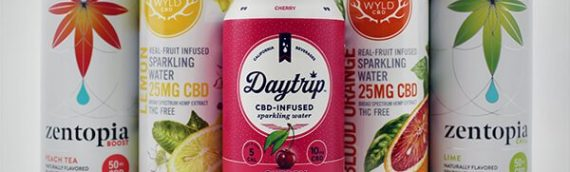 CBD Infused